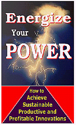 Energize Your Innovative Leadership Power - Executive Guide